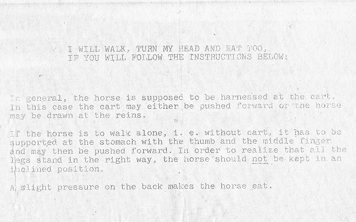 Hausser-Pferdchen-Englisch